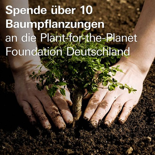 10 Baumpflanzungen